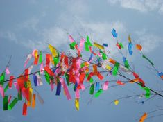 TanabataIn Japan, July 7th is the Tanabata star festival. It celebrates a romantic legend about two stars that are only able to meet each other once a year. People write wishes on colorful paper strips, and hang them as decorations, often from bamboo branches.