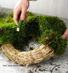 moss wreath - can't read anything on this blog, but I love the wreaths!