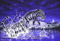 White tiger acrylics night water splash