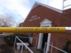 The SPCA always needs good volunteers!