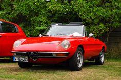 Alfa Romeo Spider Fastback | Alfa Club Berlin 11 July 2015 Nikon D90