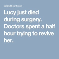 Lucy just died during surgery. Doctors spent a half hour trying to revive her.