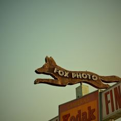 A piece of the very cool Fox Photo sign in Pico Rivera, CA. Unfortunately, the store is long gone.