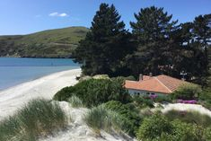 Pilot& House on the Aramoana Spit in Aramoana, Dunedin Area Between The Oceans, The Dunes, Ocean Beach, Google Images, Pilot, Cottage, River, Outdoor Decor, Holiday