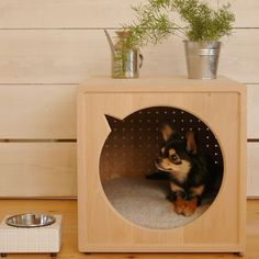 Easy and Cheap Dog Houses - DIY Dog Houses - Collares para Perros Build A Dog House, Dog House Plans, House Dog, Pet Beds, Dog Bed, Cheap Dog Houses, Dog Furniture, Fine Furniture, Pet Home