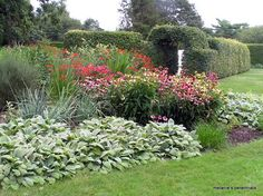 blooming flower garden