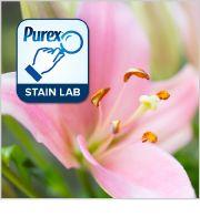 Purex #Stain Lab: How to Remove Flower Pollen Stains - By Tasha Desai, Purex Senior Scientist