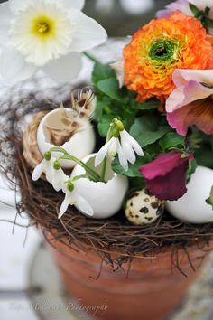 HWIT BLOGG: FLOWERS by titti & ingrid - GLAD PÅSK!