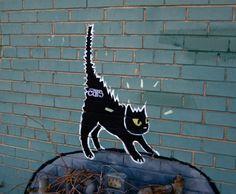 Photo By Robby Virus, Denver, Colorado, U.S.A.