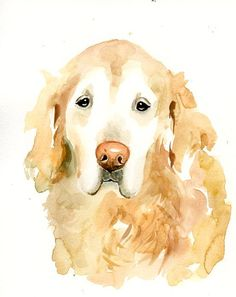 CUSTOM PET PORTRAIT  Original watercolor painting by dimdi on Etsy, $38.00