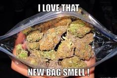 New bag smell