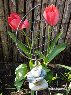 Gartenstecker , Tulpen