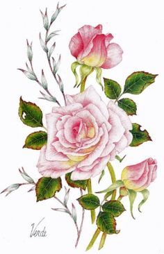 Soft Pink Rose (Medium) embroidery panel, ready to embroider Folk Art Flowers, Botanical Flowers, Botanical Illustration, Botanical Prints, Flower Art, Floral Prints, Cactus Flower, Flowers Garden, Exotic Flowers