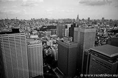 Shinjuku skyscrapers / Tokyo