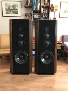 Pro Audio Speakers, High End Speakers, Audiophile Speakers, High End Audio, Hifi Audio, Stereo Speakers, Infinity Audio, Audio Room, Speaker Design