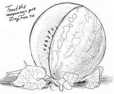 Как нарисовать арбуз карандашом поэтапно 5