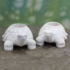Novica Set of 2 Handcrafted Soap 'Turtle Twins' Candleholders