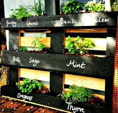 Wooden pallets are probably the most versatile and sought after items when it comes to DIY projects. One great way to use them is for pallet gardening!