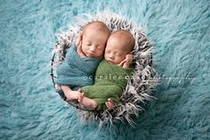 Caralee Case Photography: Samuel & William {Idaho Falls Newborn Infant Baby Twin Photographer}