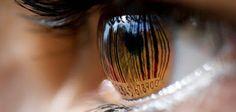 libera_psi: Neuromarketing: la psicología del consumidor
