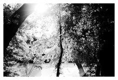 Parc de la Garenne by Renaud Jousselin on 500px