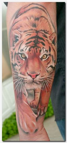 #tigertattoo #tattoo female tattoos on side, solid black armband tattoo designs, tattoo religious designs, tattoos on women, the lady with the dragon tattoo movie, butterfly and flower tattoos on leg, tattoo on neck ideas, libra and scorpio tattoos combined, skull angel tattoo, do back tattoos hurt, best tattoos for first timers, puerto rican tattoos, shoulder and arm tattoos designs, cat heart tattoo, orchid vine tattoo, remembrance tattoo designs