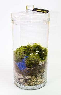 sheep // Moss Love Terrariums