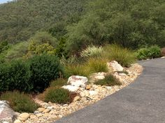 Design and construction by Broughton Landscapes, Dry creek bed used as drainage off exposed aggregate concrete driveway with water efficient planting.