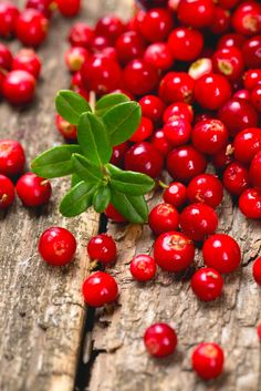 Lingonberries.