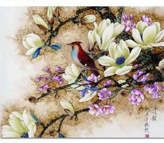 Paint by Numbers for Adults DIY Oil Painting Kit Scroll,Mediterranean Flower House)