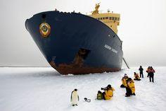 Mar de amundsen, antartida