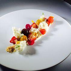 Salted Honey yogurt, tomatoes confit , strawberries , Yogurt microwave sponge cake for my next book sept 2014!! | Flickr - Photo Sharing!