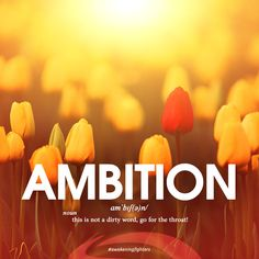 Ambition #awakeningfighters