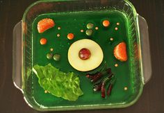 Edible Plant and Animal Cell Activity Wk 4 - Science) Edible Cell Project, Plant Cell Project, Cell Model Project, Animal Cell Project, Science Classroom, Teaching Science, Science For Kids, Learn Science, Life Science