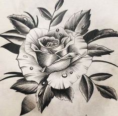 Rose Drawing – 75 Picture Ideas – Drawing Ideas and Tutorials Rose Drawing Tattoo, Realistic Rose Tattoo, Tattoo Sketches, Tattoo Drawings, Rose Tattoos, Flower Tattoos, Body Art Tattoos, Pencil Art Drawings, Art Drawings Sketches