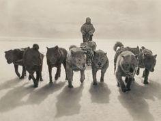 Resultados de la Búsqueda de imágenes de Google de http://ngm.nationalgeographic.com/2013/01/mawson-trek/img/02-greenland-huskies-sledge-670.jpg