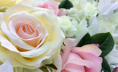 sweet yellow rose flower for love romance background