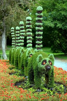 PositiveU: Hedge Ideas For Your Yard