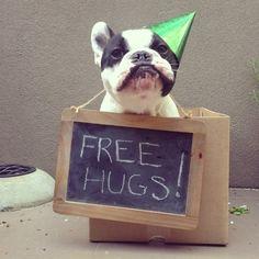 Free Hugs, French Bulldog, via Batpig & Me Tumble It