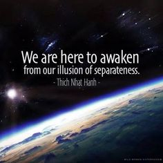 We are here to awaken from our illusion of separateness. - Thich Nhat Hanh.