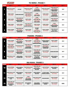 Les Mills Pump and Insanity hybrid schedule