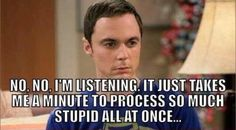 So Much Stupid funny quotes quote funny quote funny quotes funny sayings humor stupid sheldon big bang theory Motivacional Quotes, Funny Quotes, Funny Memes, Stupid Quotes, The Big Bang Theroy, The Big Theory, Big Bang Theory Quotes, Georg Christoph Lichtenberg, Haha