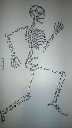 All Things Beautiful: Human Biology: Bones and the Skeletal System - Science Medical Students, Medical School, Nursing Students, Medical Science, Radiology Student, Student Memes, Student Nurse, Dental Hygiene Student, Student Login