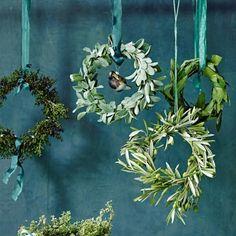 ▷ Tinker Christmas decorations - that's how it gets festive!-▷ Weihnachtsdeko basteln – so wird's festlich! ▷ Make Christmas decorations yourself – make wreaths, cards & Elegant Christmas, Christmas 2019, Xmas, Christmas Wreath Image, Christmas Wreaths, Wedding Wreaths, Tree Wedding, Artificial Bridal Bouquets, Holiday Images