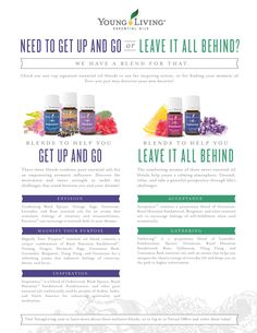Young Living Essential Oils: Acceptance Gathering Envision Magnify your Purpose Inspiration