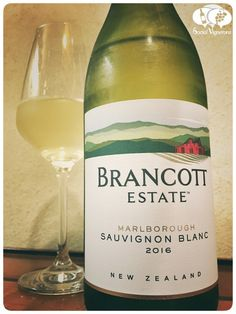 2016-brancott-estate-sauvignon-blanc-marlborough-new-zealand-white-wine-front-label-social-vignerons