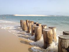 Other large open spaces in Cap Ferret, Aquitaine - landscape Lacanau Ocean, Cap Ferret, Seaside Beach, Beach Landscape, Beach Scenes, France Travel, Beach Photos, Beautiful World, Places To Travel