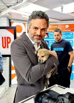Mark Ruffalo for National Puppy Day Little Puppies, Cute Puppies, Xbox News, Dog Rates, National Puppy Day, Man Thing Marvel, Happy Puppy, Marvel Actors, Puppy Pictures