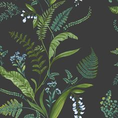 Cembra by Albany - Navy : Wallpaper Direct Green Floral Wallpaper, Botanical Wallpaper, Striped Wallpaper, Charcoal Wallpaper, Green Dining Room, Dining Rooms, Up House, Wallpaper Online, Blue Wallpapers