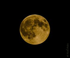 https://flic.kr/p/xHZTqY | Red Moon 015_1959.jpg | Superluna del 29 agosto